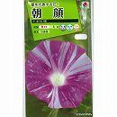 [花タネ]アサガオ(イポメア):大輪朝顔   平安の輝