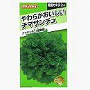 [タキイ 野菜タネ]チマサンチュ(韓国カキチシャ):青葉種*