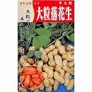 [野菜タネ]落花生(らっかせい)