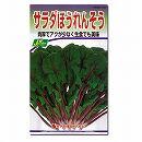 [野菜タネ]サラダほうれんそうの種