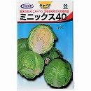 [野菜タネ]キャベツ:ミニキャベツ ミニックス40