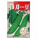[福神漬・ヌカ漬・みそ漬に!野菜タネ]刀豆(なたまめ・鉈豆)(白刀豆 白鉈豆)