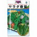 [野菜タネ]シュンギク:サラダ春菊(きくばり)*