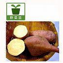サツマイモ苗:安納芋3号ポット4株セット