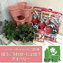 いちご栽培セット:ハーベリーポットといちご苗3種(宝交早生・女峰・アイベリー)