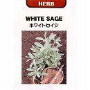[タネ]ハーブ:ホワイトセージの種(セイジ)