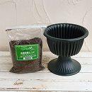 スタンド鉢:ルナ8号グリーン(プラ鉢)と培養土のセット