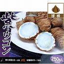 ウコン:紫ウコン(ガジュツ)250g入り