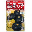 [サカタ 野菜タネ]かぼちゃ:ミニ栗かぼちゃ栗坊(くりぼう)