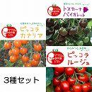[17年4月中旬予約]マウロの地中海トマト・生食用カラフルコレクション3種6株セット
