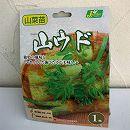 野菜球根パック:ヤマウド(山独活)1株