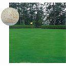 芝の種:西洋芝クリーピングベントグラスLS-44 1kg