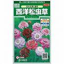 [花タネ]西洋松虫草:切り花用混合
