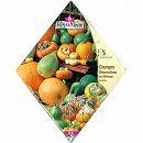 [ハロウィンの装飾に!春まき タネ]オーナメンタルカボチャミックス(大きめの観賞用かぼちゃ)