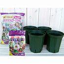 クリスマスローズ用の鉢と用土と肥料のセット:スリット鉢5号ロングタイプ(モスグリーン) 4鉢分