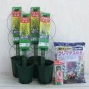 クレマチス1年生苗植え替え用:鉢と用土と支柱のセット4株分(スリット鉢5号)*