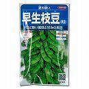 [サカタ 4〜6月まき 野菜タネ]えだまめ(枝豆):夏の装い