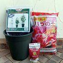 バラ用 ミニオベリスク B-120型と鉢と土と肥料のセット