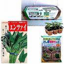 春まき種の苗つくりセット:エンサイ(空芯菜)