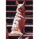 インプルネータテラコッタ:牧羊犬