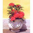 イタリア製花鉢:ルッビアーノ壁置き