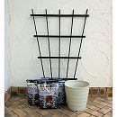 クレマチス用:鉢と土とトレリスのセット(フレグラーポット:30型アイボリー)