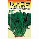 [野菜タネ]【有効期限17年08月】ロケットサラダ ルッコラ