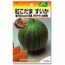 [4〜5月 まき野菜タネ]スイカ:紅こだま