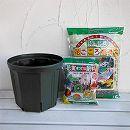 果樹用の鉢栽培セット・スリット鉢 1〜2年目用