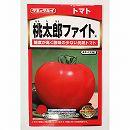 [野菜タネ]トマト:桃太郎ファイト