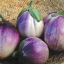 [イタリアの伝統的な茄子 野菜タネ]ナス:ロッサ ビアンコ