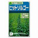 [タネ]ヒットソルゴー(緑肥・土壌改良作物)