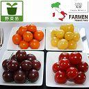 [17年4月中旬予約]生食用イタリアントマト無農薬シリーズ:イタリアン4品種セット