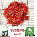[17年4月中旬予約]トマトのかんたん栽培セット:マイクロトマト・レッド