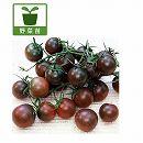 トマト:日本育ちの黒いトマトミニ3号ポット2株セット