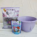 草花用 プラスチック製 カラーズ鉢と土と肥料のセット