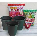 バラ3株の鉢植え栽培資材セット