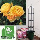 つるバラ栽培セット:グラハム・トーマス大苗と鉢・オベリスク・用土・肥料のセット