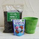 草花用 アートストーン ラウンド ライム 直径17cmと土と肥料のセット