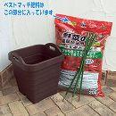 野菜用 リサイクルプランターハンディ340と支柱と土と肥料のセット