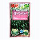 [4〜8月まき タネ]リトルソルゴー(ソルガム)